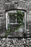 Asylum Window Royalty Free Stock Photo