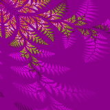 Asymmetrical pattern of the leaves in purple and green. Royalty Free Stock Image