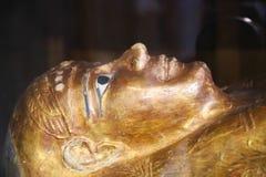 Ataúdes de Goldy - museo egipcio fotografía de archivo libre de regalías