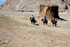 atacama智利沙漠骑马 库存照片
