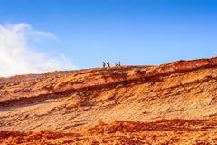atacama智利沙漠 库存照片