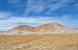 Atacama,智利 免版税库存图片