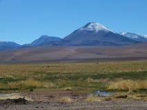 Atacama öken Royaltyfria Bilder