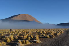 Atacama öken - geyser arkivbild