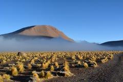 Atacama öken - geyser i El Tatio Arkivfoto