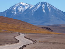 Atacama Royalty Free Stock Photos