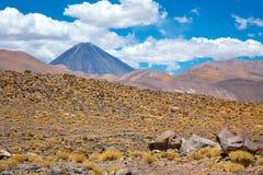 Atacama Altiplana pustyni góry i sawanna kształtujemy teren, Miniques w Chile, Ameryka Południowa Fotografia Royalty Free