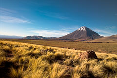 Atacama desert. Licancabur volcano in the Atacama desert, Chile Stock Photography