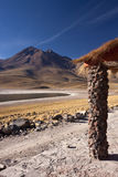 Atacama Desert - Chile. Laguna Miscanti and the Miniques Volcano in the High Andes Mountains in the Atacama Desert in Northern Chile Stock Photography
