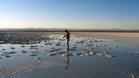 Atacama Desert, Chile. Lago de Sal, Atacama Desert salt lake, Chile Stock Photography