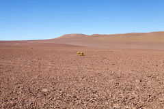 The Atacama desert, Chile. Atacama desert is a plateau in South America,strip of land of the Pacific coast, west of the Andes mountains Stock Photos