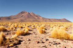 Atacama desert Stock Photo