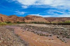 Atacama desert dirty river Royalty Free Stock Photo