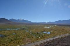 Atacama desert - geyser. In El Tatio royalty free stock images