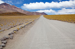 Atacama desert landscape, Chile. The footpath and the road from the Miscanti lagoon to Miniques lagoon with volcano in the background in the Atacama desert Stock Image