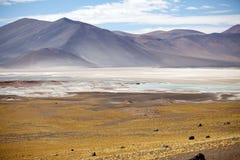 Atacama desert landscape, Chile Royalty Free Stock Photography
