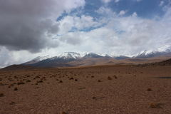 Atacama Desert. Near the border of Bolivia and Chile Royalty Free Stock Photo