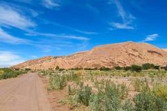 Atacama desert oasis landscape Royalty Free Stock Image