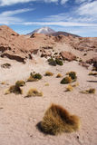 Atacama desert with Ollague volcano, Bolivia Royalty Free Stock Images