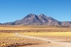 Atacama desert. Path to Lagunas Altiplanicas in Atacama desert stock images