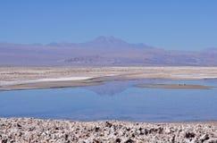 Atacama desert. Royalty Free Stock Images