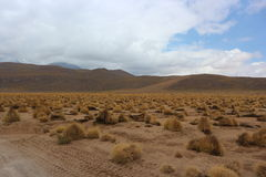 Atacama Desert View. Background of the Atacama Desert near the border of Bolivia and Chile Royalty Free Stock Photo