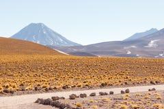 Atacama desert Stock Images