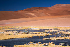 atacama pustyni marznąca laguna Fotografia Stock
