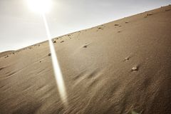 Atacama verlaat Zand en Sun Ray Beaming Down stock foto