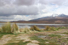 Atacama-Wüste Laguna Capina Lizenzfreie Stockfotografie