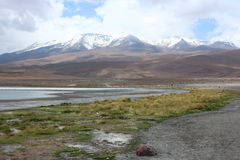 Atacama-Wüste Laguna Capina Lizenzfreie Stockbilder