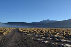 Atacamawoestijn - geiser royalty-vrije stock afbeeldingen