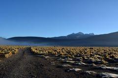 Atacamawoestijn - geisersvallei in Gr Tatio in Chili stock fotografie