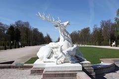 Atakująca psami rogacz Rzeźba Fotografia Royalty Free