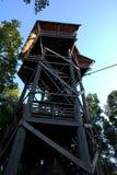 Atalaya en selva tropical Fotografía de archivo