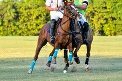 Ataque do cavalo Imagens de Stock Royalty Free