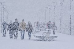 Ataque do inverno Fotografia de Stock