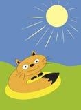 Ataque do Sunbeam Fotografia de Stock Royalty Free