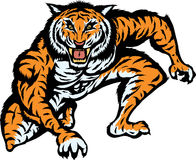Ataque do tigre Imagem de Stock Royalty Free