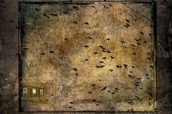 Ataque dos corvos fotografia de stock royalty free
