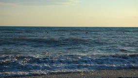 Ataque no mar, dia de verão ensolarado video estoque