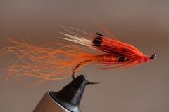 Atar una mosca mojada de color salmón clásica, el camarón del aliado imagen de archivo libre de regalías