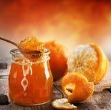 Atasco anaranjado Imagenes de archivo