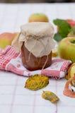 Atasco de la manzana del otoño Imagen de archivo libre de regalías