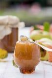 Atasco de la manzana del otoño Fotografía de archivo