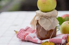 Atasco de la manzana del otoño fotografía de archivo libre de regalías
