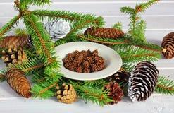 atasco del abeto, conos del pino Imagen de archivo libre de regalías