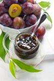 Atasco del ciruelo en un tarro de cristal y frutas frescas con el leav Imagen de archivo libre de regalías