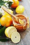 Atasco del limón Imágenes de archivo libres de regalías