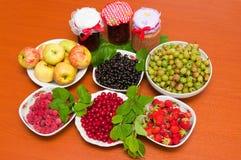 Atasco y fruta fresca Fotografía de archivo